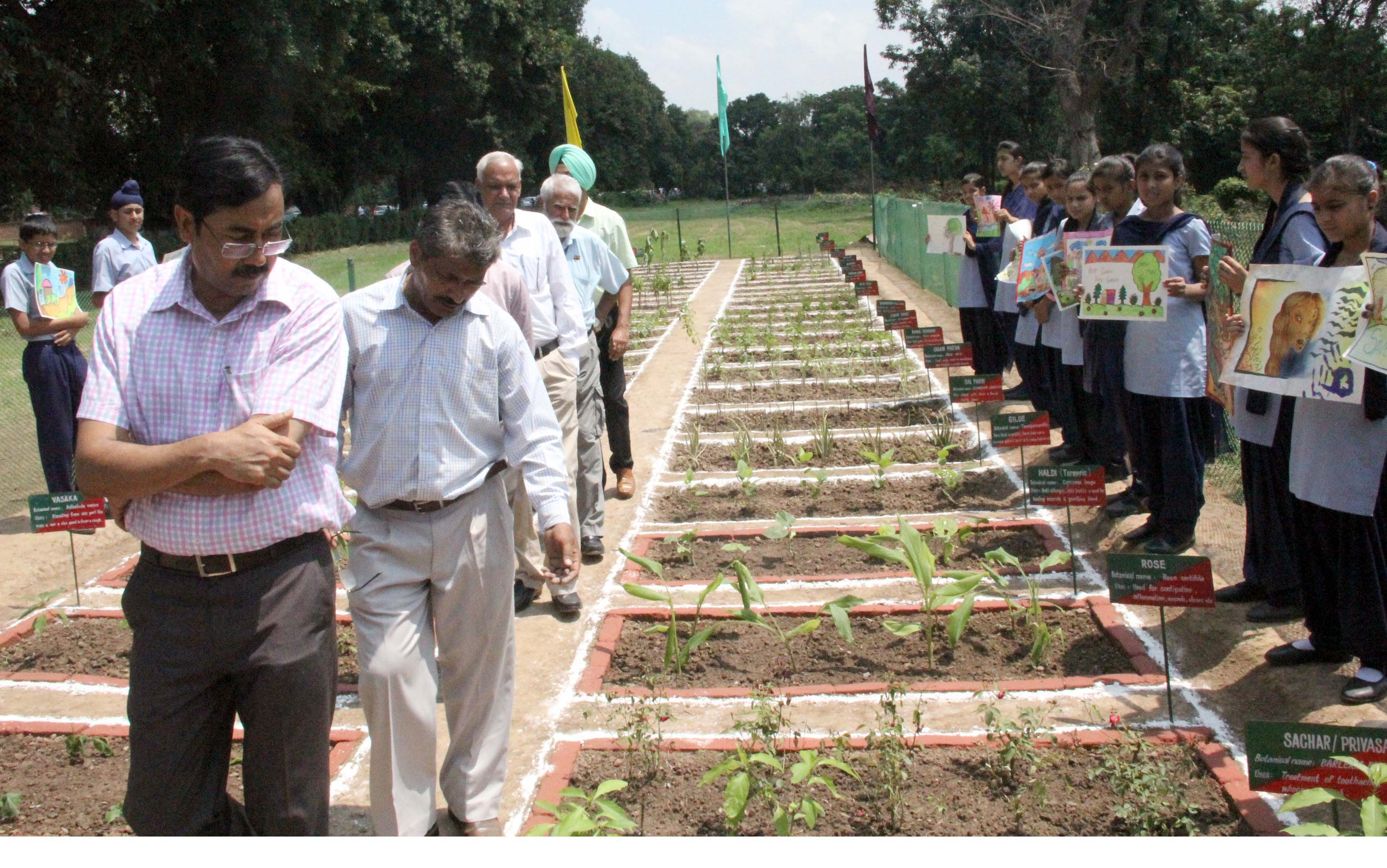 UT Home Secretary, Mr. Anil Kumar taking a round of nursery on the celebration of HERBAL DAY -2014 at Rose Nursery, Sector-23, Chandigarh on Wednesday, July 30, 2014.